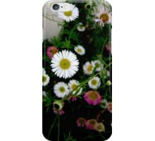 By the white picket fence iPhone Case/Skin
