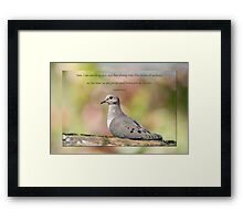 Be wise as serpents and innocent as doves . . . Framed Print