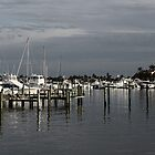 In the Bay - Naples, Florida by Kristy-Lyn Faircloth