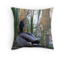 bill  of a thought Throw Pillow