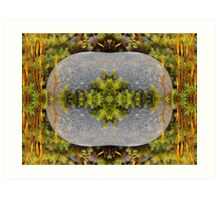 Of Moss and Stone Art Print