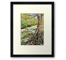 River Hafren (Severn) in September Framed Print