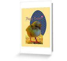 Easter Chick Card Greeting Card