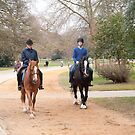 Horse Riding: Dulwich Park, London, UK by DonDavisUK