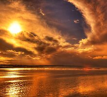 Golden touch of Nature by Svetlana Sewell