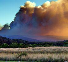 Bush Fire by Arthur Koole