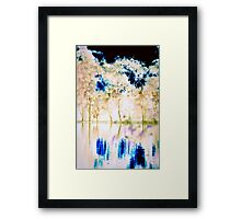 River Echoes 3 Framed Print