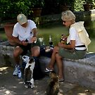 picnic at villa d'Este, Tivoli by BronReid
