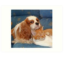 dog and cat Art Print