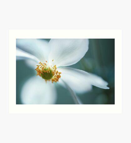 light white Art Print
