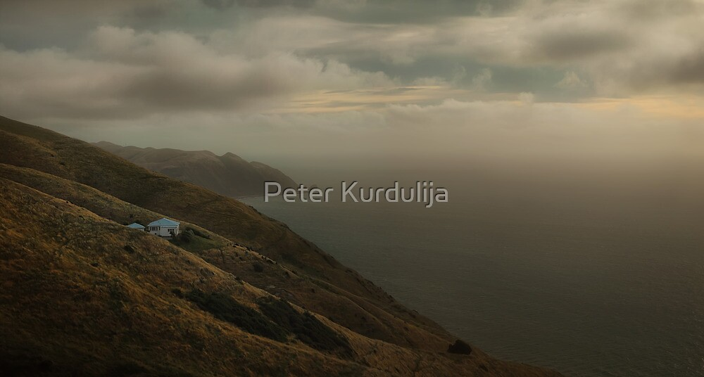 Mist, All Over His Private Ocean by Peter Kurdulija