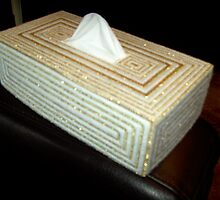 Crafts~Latest activity tissue box cover in plastic canvas by anaisnais