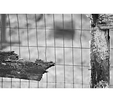 The chicken coop-Last days on the farm Photographic Print