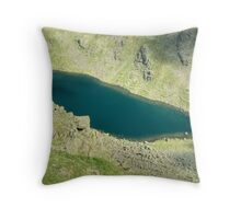 Goats Water From Above Throw Pillow