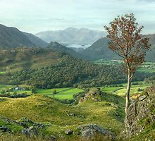 Beautiful Borrowdale by Jamie  Green