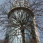 Looking Up by Lorraine Bratis