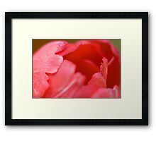 Soft Lips Framed Print