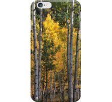 Aspen Trees at Maroon Bells, Aspen, Colorado iPhone Case/Skin