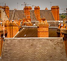 So Many Chimneys! by Jacinthe Brault