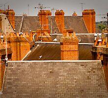 So Many Chimneys! by Jacinthe Brault