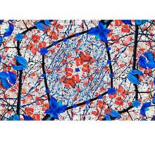 Floral Pattern Digital Collage Photographic Print
