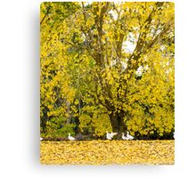 Winter Fall Flap Canvas Print