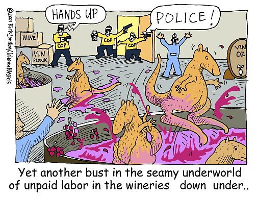 Kangaroo Slave Labor Of Down Under by Londons Times Cartoons by Rick  London