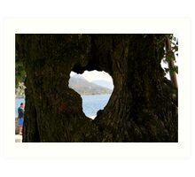 Hearted bark Art Print