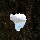 Hearted bark by sstarlightss