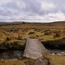 Dartmoor: Bridge Across the Leat by Rob Parsons