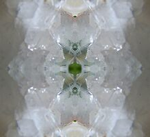 The Quartz Portal by spiritahgraphy