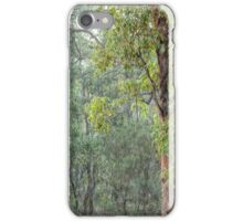 Gumtrees in the Pouring Rain iPhone Case/Skin