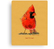 Cardinal in colored pencil  Canvas Print