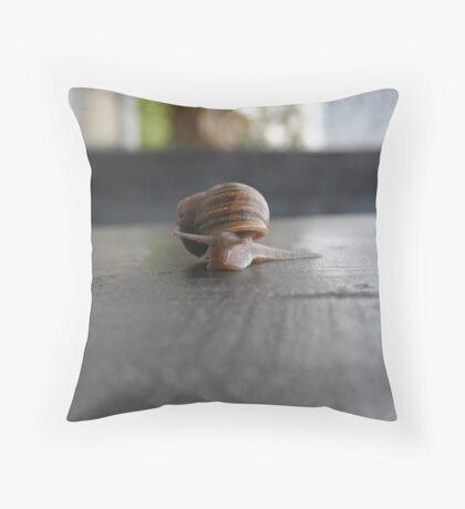 Snail Wall Throw Pillow