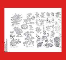 New Sample Book of Our Artistic Perforated Parchment Stamping Patterns Kate Greenaway, John Frederick Ingalls 1886 0004 One Piece - Long Sleeve