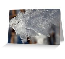 Ice crystals on plant stem Greeting Card