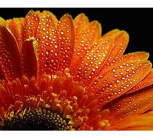 Orange Pearls Photographic Print