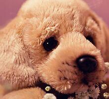 Puppy Love V.1 by Angela  Ardis