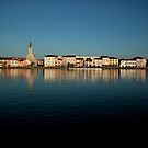 View of Macon across the river Saone in France by John Gaffen