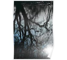 Reflected Sky Through Reflected Trees Poster