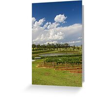 Hunter Valley Vineyard Greeting Card