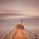 Amble Lighthouse  by Ian Parry
