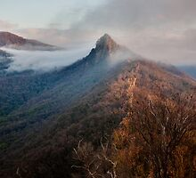Sunset on Sugarloaf Peak by Will Hore-Lacy