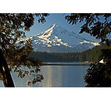 Mount Hood - Through The Trees Photographic Print