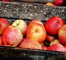 French Market Apples by Catherine Fenner