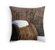 Haybale of Snow Throw Pillow