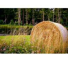 Summertime in the Country Photographic Print