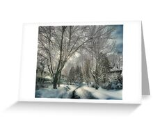 Brookline after Blizzard Nemo Greeting Card