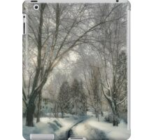 Brookline after Blizzard Nemo iPad Case/Skin