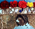 Roses on a Shrine - East Los Angeles by Larry3